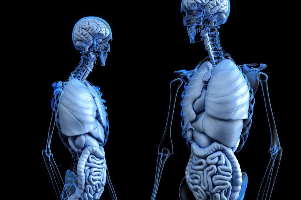 Choroby cywilizacyjne układu pokarmowego